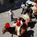 SCHEDA ISTITUZIONE COMUNALE-festepatronali San Giuseppe02